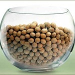 Soya Beans (Soybeans) the Miracle Food You Should Eat