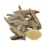 Boost Your Immune System with Astragalus Root Extract