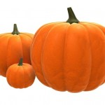 Pumpkin Diet | Lose 17 lbs in Just Two Weeks