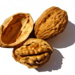 Walnut Benefits for Your Health