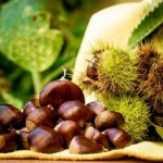 Eat Healthy – Eat Roasted Chestnuts