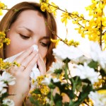 6 Methods that Help You Stay Away from Spring Allergies